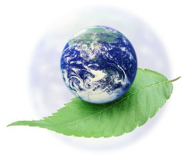 Indian Green Initiatives