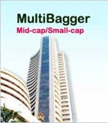 Multi-bagger stocks