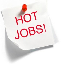 Hot JObs Top 5 hot careers of 2011 12 !