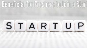 Is it Beneficial for Freshers to Join Startups in the Initial Stage of Their Career?
